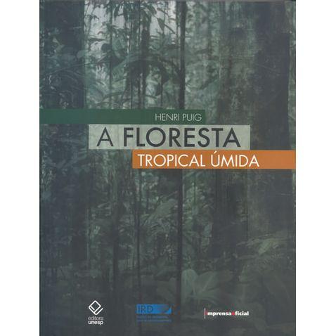 floresta-tropical-umida-a-328158.jpg