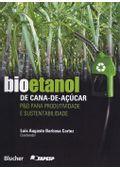 bioetanol-de-cana-de-acucar-6739ca68bb.jpg