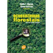 ecossistemas-florestais-162776.jpg