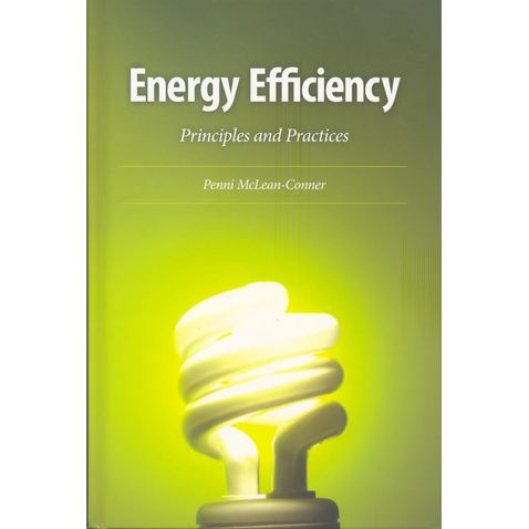 energy-efficiency-96055bfc49.jpg