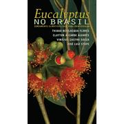eucalyptus-no-brasil