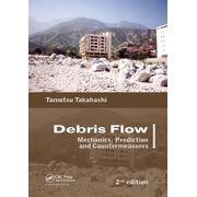 debris-flow