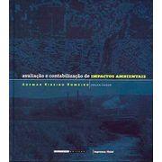 avaliacao-contabilizacao-impactos-ambientais