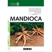 mandioca-plantio-colheita